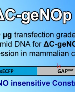 ΔC-geNOp